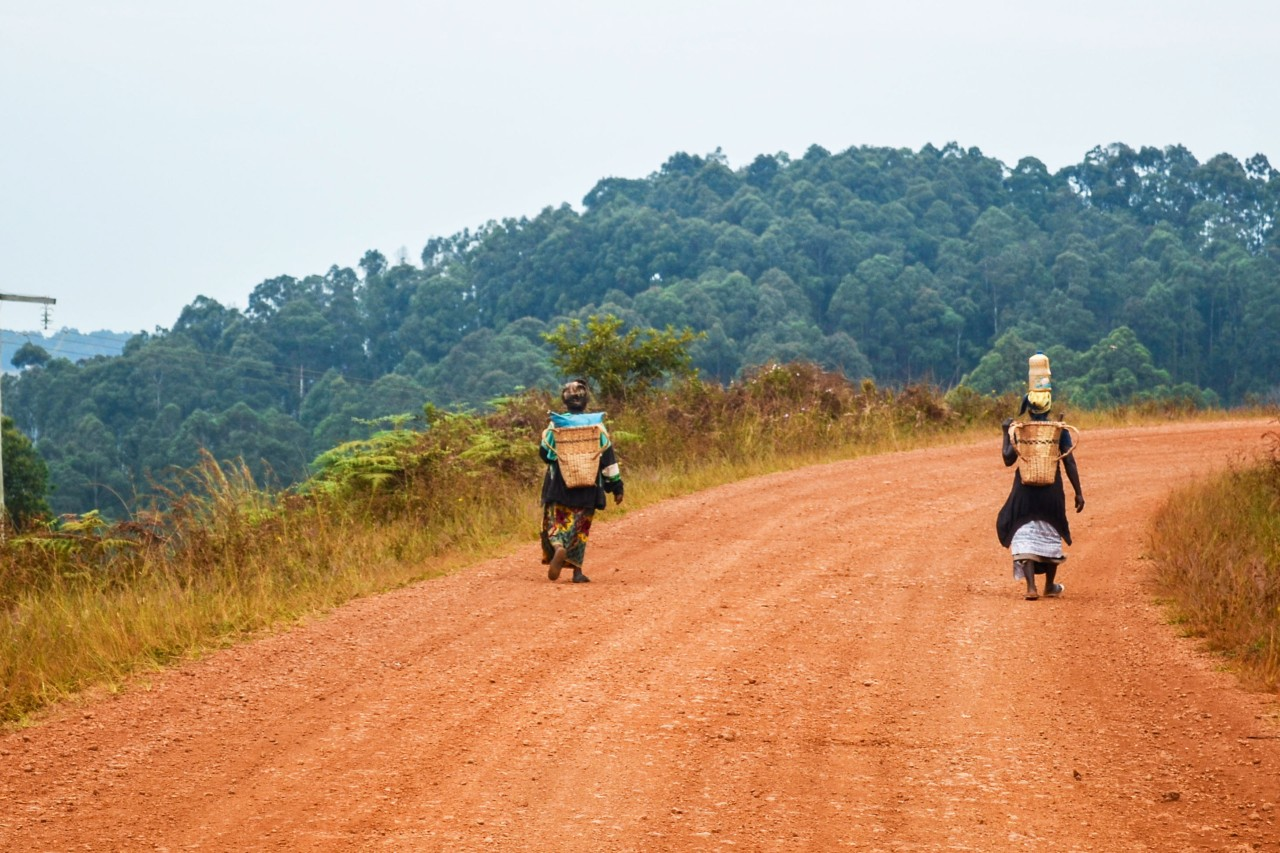 The WACKER Magazine - Road Construction in West Africa