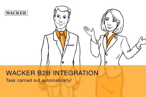 Preview video about B2B integration