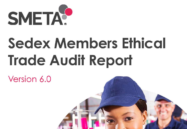 Sedex Audit Report